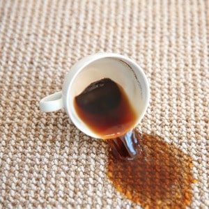 Clever tip for removing coffee stains from carpet. One of my favorite carpet cleaning hacks!