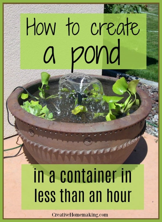 Easy step by step guide to building a pond in a container in less than in hour.