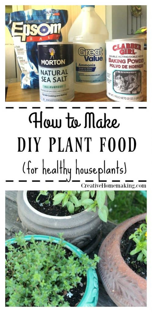 DIY plant food for houseplants. Easy inexpensive care for indoor houseplants.