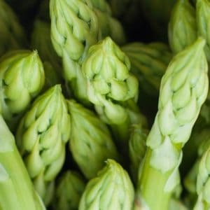 Easy recipe for canning asparagus. Pressure canning for beginners.