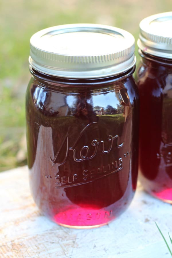 Easy recipe for canning old-fashioned homemade grape jelly. Learn how to make jelly like a pro!