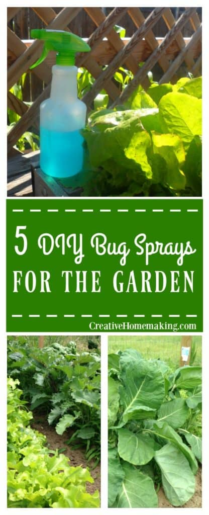 5 diy bug sprays for the garden