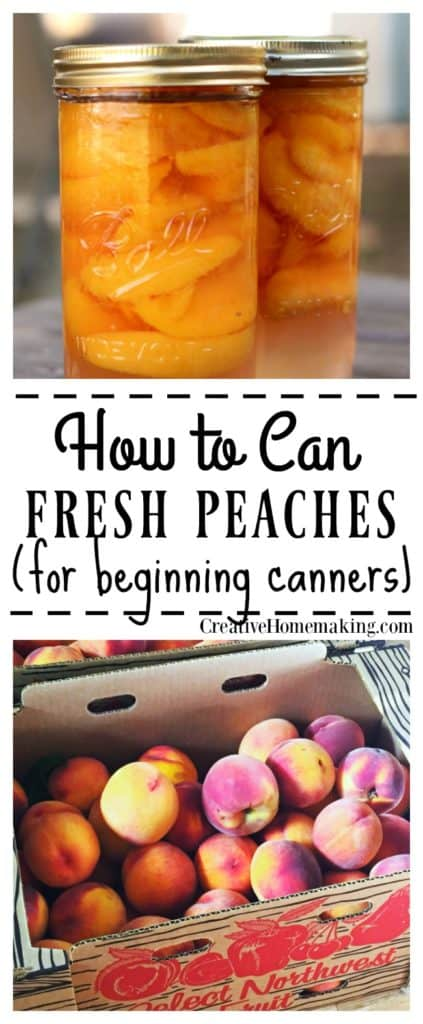 Easy recipe for canning peaches, includes how to can peaches in light syrup or in water with no sugar. Great canning recipe for beginners!