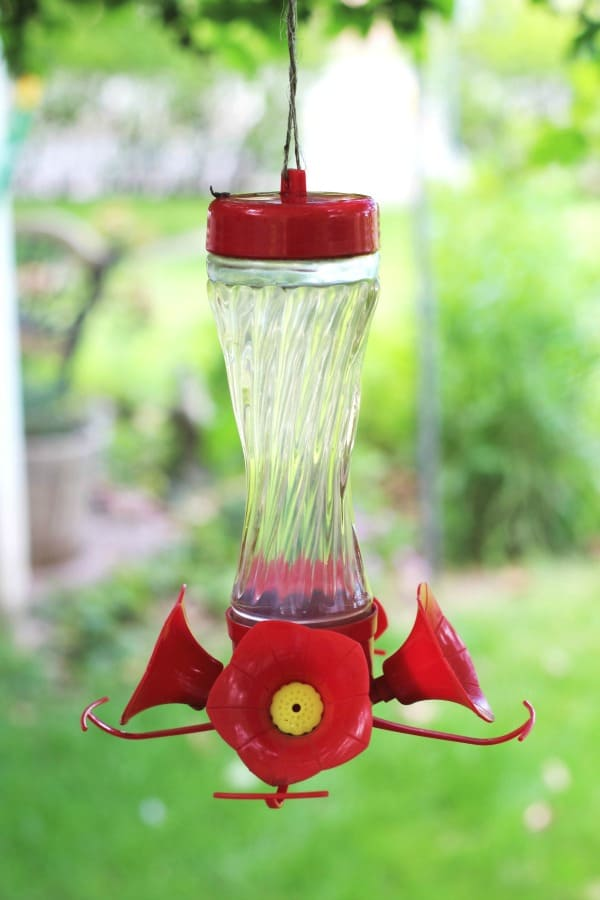 Easy homemade hummingbird food you can make to attract hummingbirds to your yard during the summer months.
