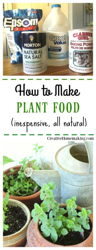 Easy homemade plant food made from household ingredients.