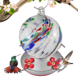 Best glass hummingbird feeders