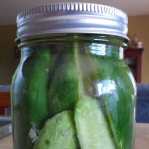 Good, old-fashioned recipe for canning homemade garlic dill pickles with a water bath.