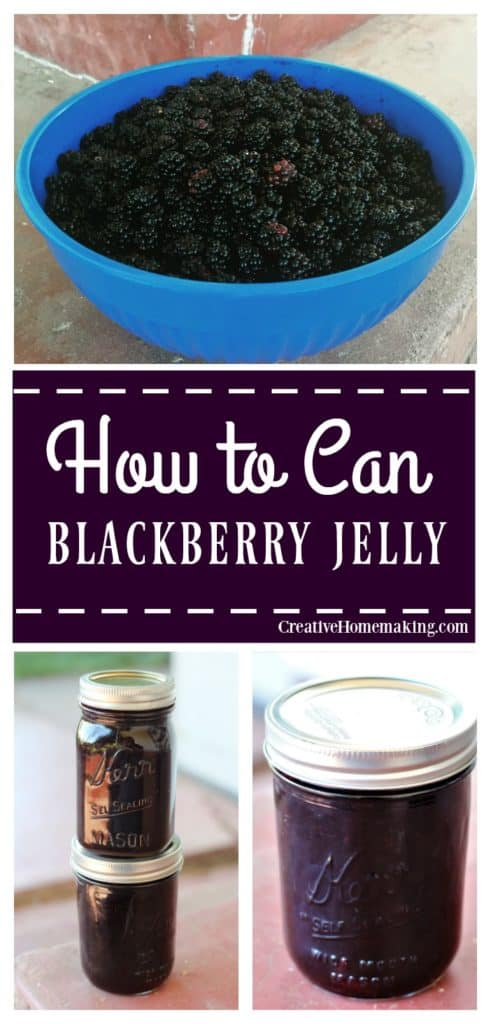 Easy recipe for canning blackberry jelly. Learn how to make jelly like a pro!