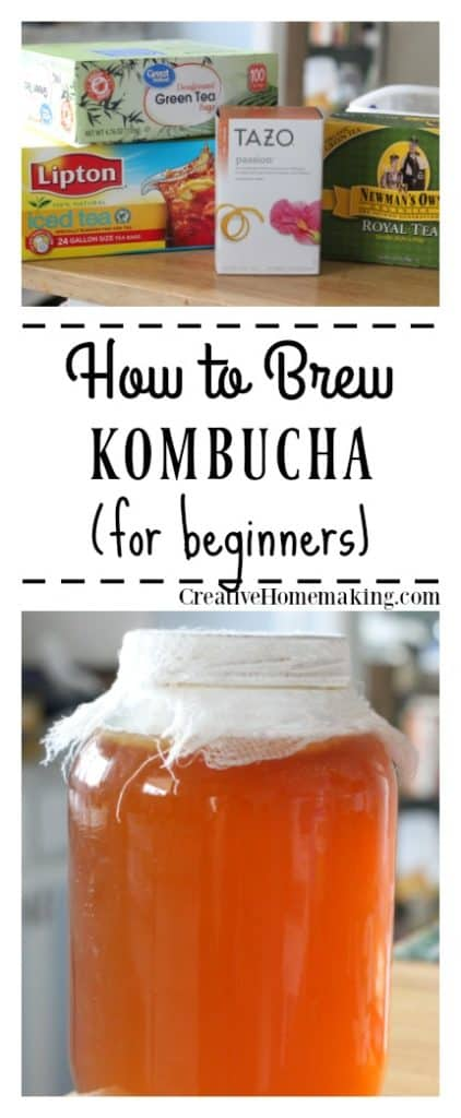 Brew your own kombucha at home! Easy kombucha recipe for beginners.