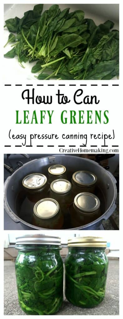 How to can leafy green vegetables from your garden. Step by step pressure canning for beginners.