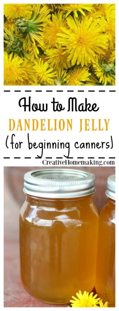 Easy recipe for canning homemade dandelion jelly. Tastes just like honey!