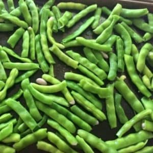 It's green bean season! Learn how to freeze the green beans from your garden with