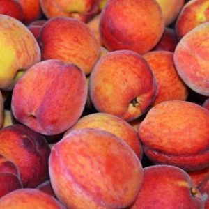 How to Freeze Peaches with Fruit Fresh - Creative Homemaking
