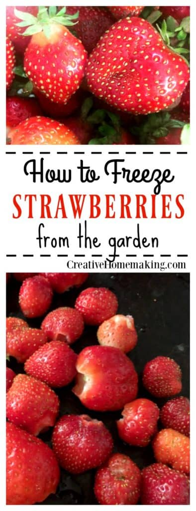 Easy tips for freezing extra strawberries from your garden.