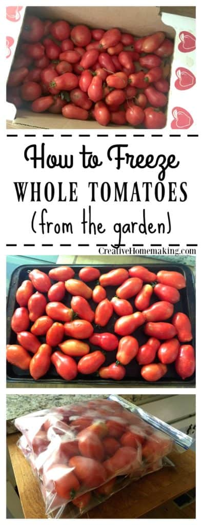 Extra tomatoes? Learn the easy way to freeze extra tomatoes from the garden.