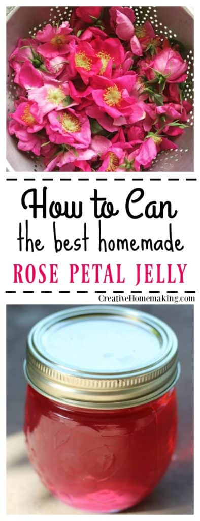 How to can rose petal jelly. Rose petal jelly tastes exactly like roses smell! It has a distinctly floral taste and is colored the same color as the roses with no added food coloring!