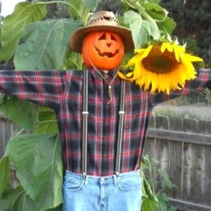 Easy, inexpensive DIY scarecrow you can use year after year to decorate for fall or Halloween.