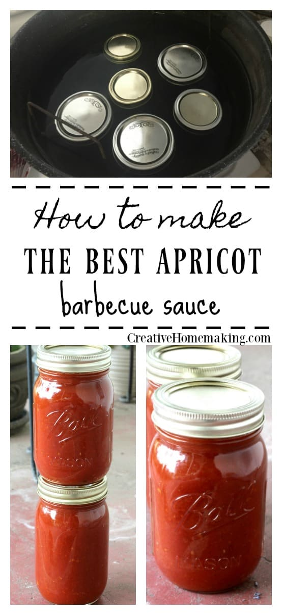 Recipe for the best apricot barbecue sauce. Easy recipe for beginning canners. This tangy barbecue sauce goes great with chicken and pork.