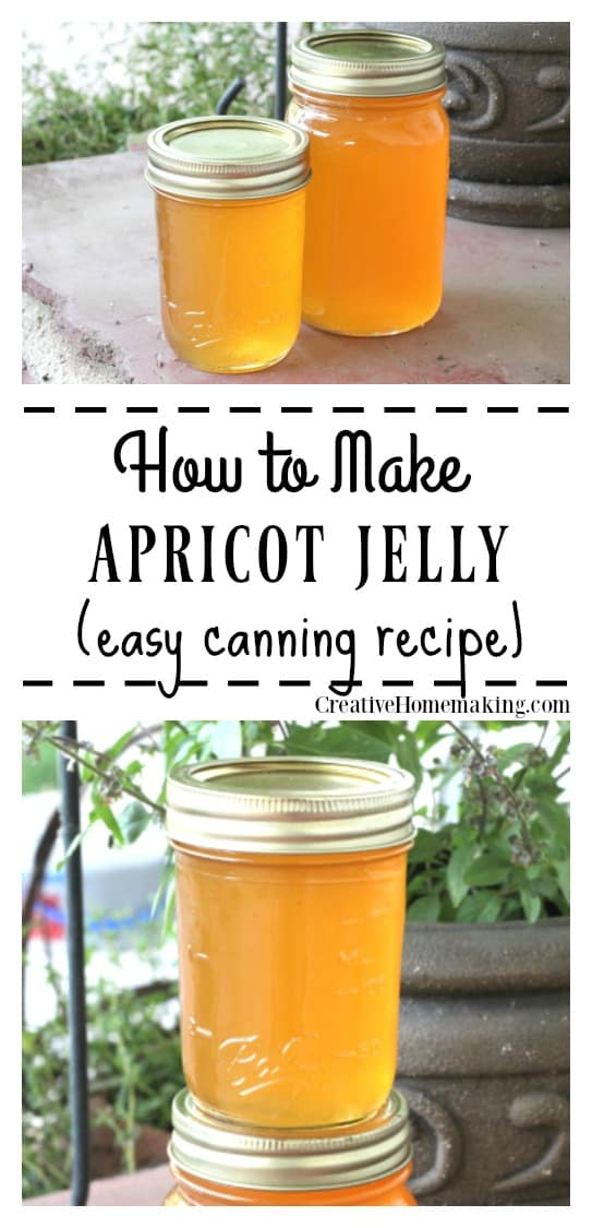 This apricot jelly is easy to make and a great alternative to apricot jam. Includes easy step by step canning instructions for beginning canners.
