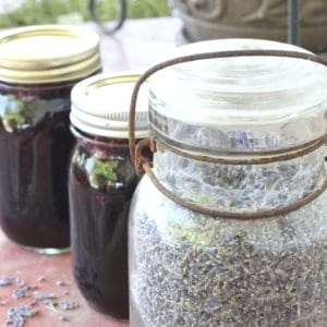 Blueberry lavender jam canning recipe. Easy recipe for beginning canners.