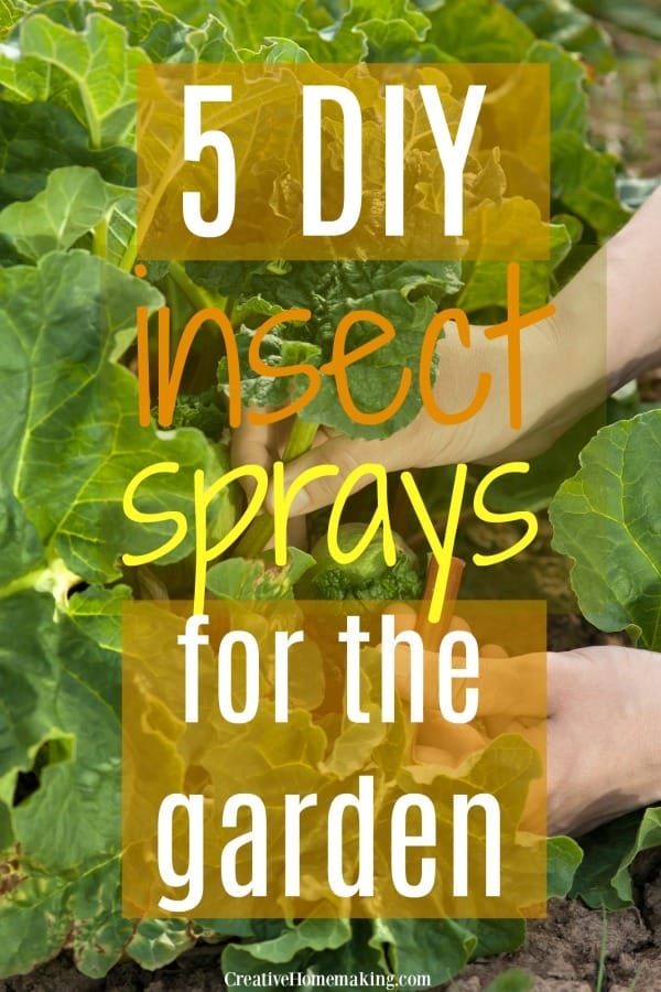 Easy DIY insect sprays for your garden. The best homemade bug sprays for your vegetables!