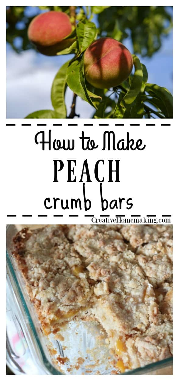 Easy recipe for peach crumb bars. A great summer dessert for enjoying fresh peaches.