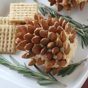 These pinecone cheeseballs are a great holiday party food appetizer idea! Make ahead of time and refrigerate until the day of the party or holiday meal.