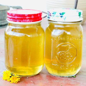 Two pint jars of dandelion syrup