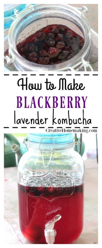 blackberry lavender kombucha