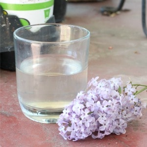 Glass of fresh lilac lemonade sitting on the front porch