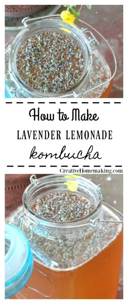 Easy recipe for lavender lemonade kombucha, one my favorite lavender drink recipes!