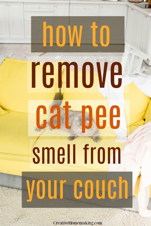 How to remove cat pee smell from your couch using common household products like baking soda and vinegar, plus the BEST enyzme cleaner on the market.