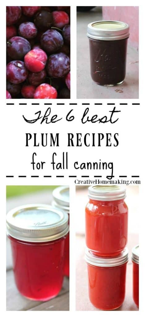 The best plum canning recipes. Easy recipes for making plum jam, an easy Asian plum sauce, and more.