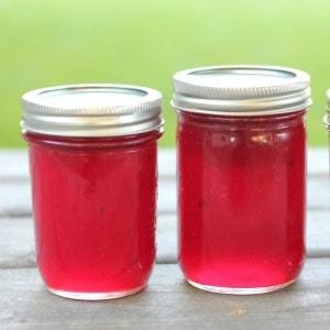 Easy recipe for old-fashioned homemade plum jelly.