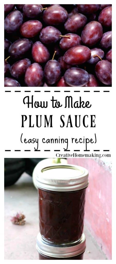 Easy Chinese plum sauce recipe for canning. Serve as a dipping sauce for egg rolls, wontons, and spring rolls or use to baste chicken or pork. My favorite spicy Asian canning recipe for stir fry.