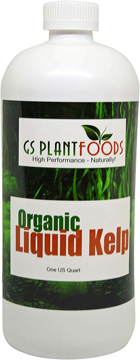 JLiquid Kelp Extract Seaweed 32 Ounce Fertilizer Concentrate