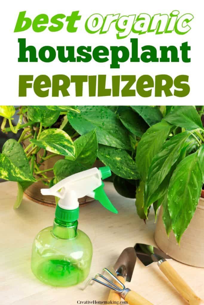 The best organic houseplant fertilizers. How to choose a plant food for indoor plants.