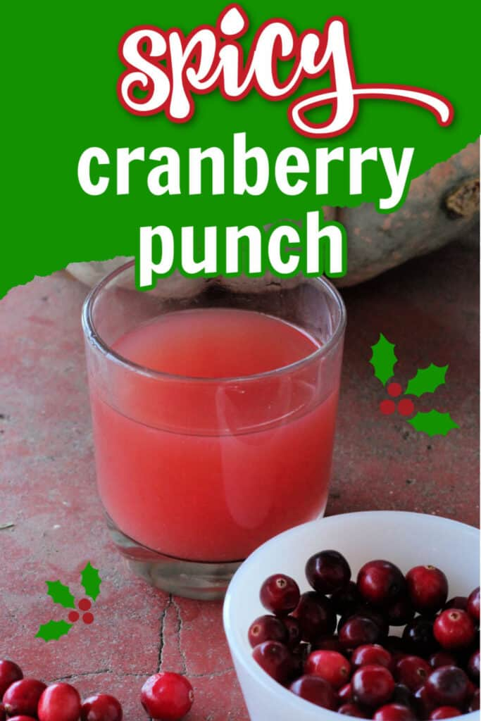 Easy spicy cranberry punch recipe for Christmas or the holidays.