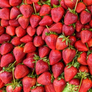 How to use a flat of strawberries. Complete freezing and canning tips!